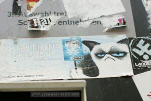 Dresden Neustadt Grumpy Cat