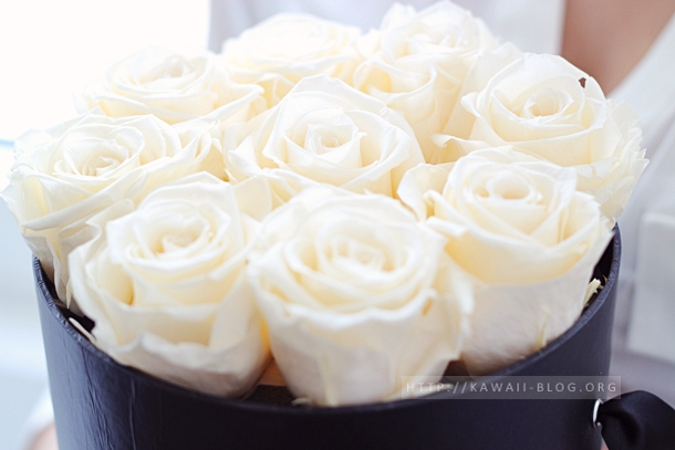 Fleurs du Coeur Infinity Rosen in Creme
