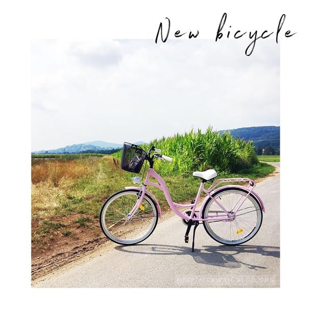 Milord Fahrrad rosa