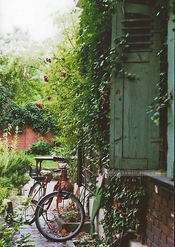 Analoges Foto eines Fahrrads in Gostenhof
