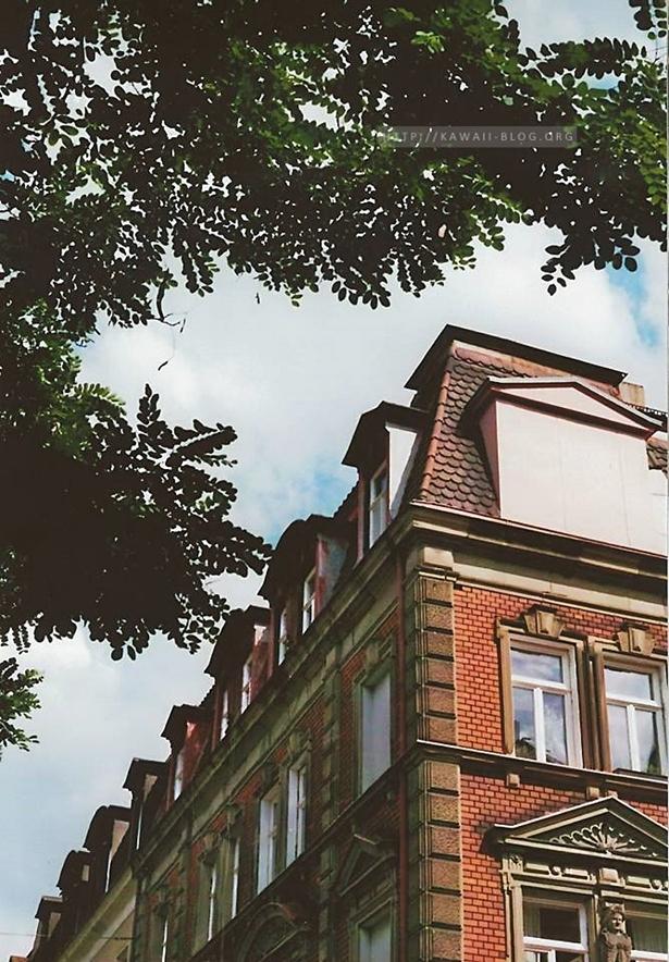 Dächer von Gostenhof auf analogem Film